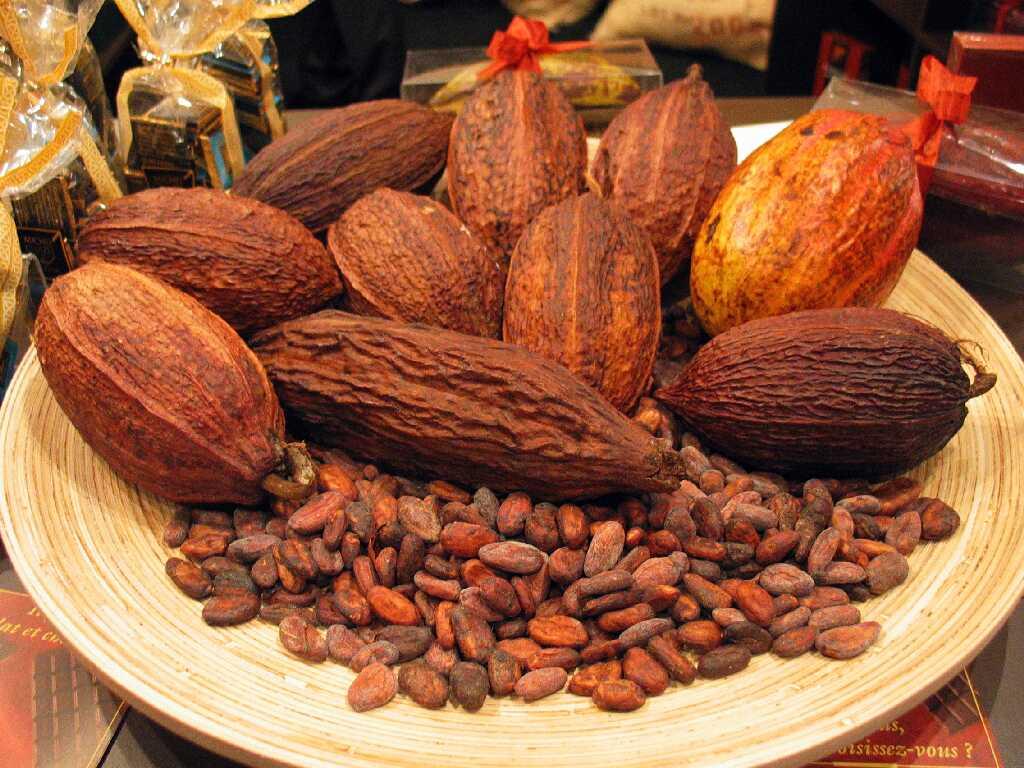 可可提取物 可可提取物 中文名称:可可提取物 英文名称:Cocoa Extract ... 可可