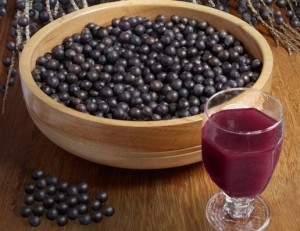 巴西莓图片