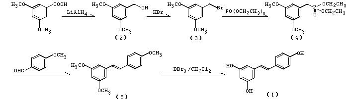 白藜芦醇的合成
