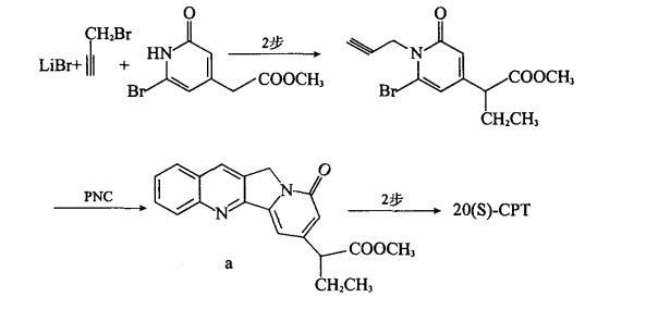 喜树碱化学合成的关键技术