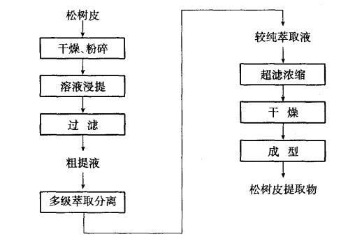 松树皮提取物的提取流程图