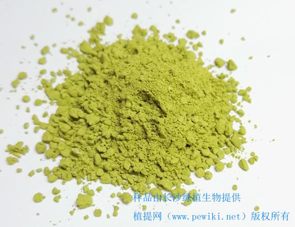 辣木叶新资源食品质量标准