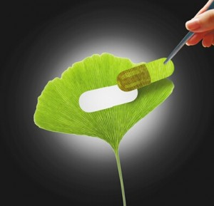 保健食品原料中植物提取物的标准空白亟须填补