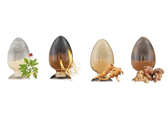 [独家]简述人参、西洋参、三七皂苷的特性及区别
