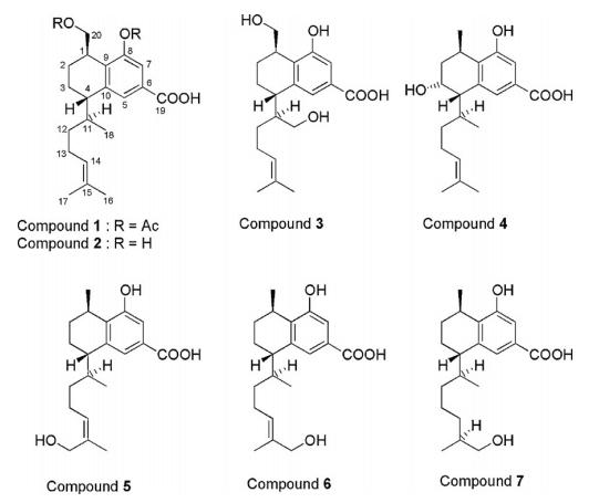 [求助]图片中的化学结构式是什么成分,国内有没有什么植物可以提取