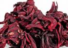 [英国]玫瑰茄花萼水提取物的通便作用